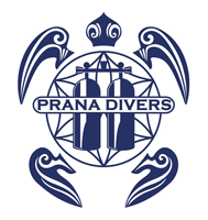 Dive With PrAna Bohol